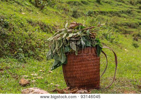 straw basket with reed