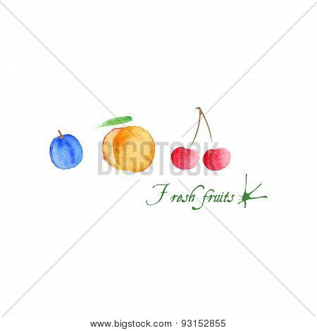 Vector watercolor background. Peach, plum and cherry
