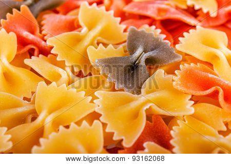 Italian pasta close-up.