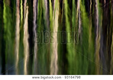 Abstract Green Natural Background.