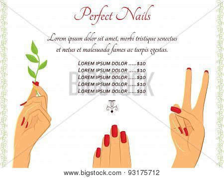 Manicure hands vector template