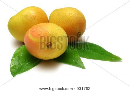Three Mangoes