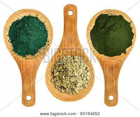 spirulina, kelp and chlorella supplement powders - top view of isolated wooden spoon
