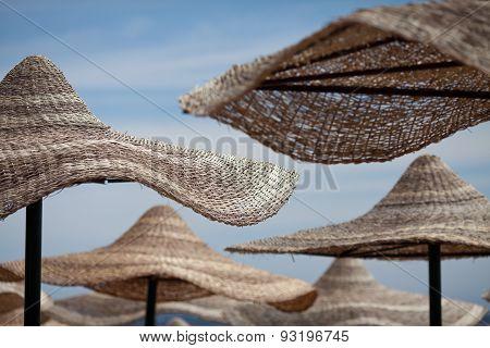 beach umbrellas under the sun
