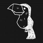 foto of toucan  - Toucan Doodle - JPG