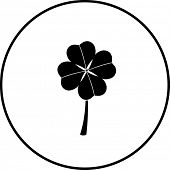 image of four leaf clover  - clover with four leaves symbol - JPG