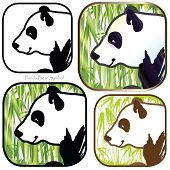 picture of panda bear  - Panda Bear Symbol cartoon graphic design one color out line to full colors fantasy you can choose for your art work print logo icon sign banner brochure sticker or pattern - JPG
