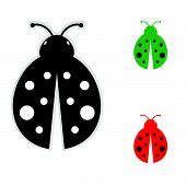 stock photo of ladybug  - ladybug color vector illustration on a white background - JPG
