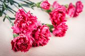 foto of carnation  - Pink carnations flower bouquet on rustic table - JPG
