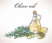 picture of kalamata olives  - Illustration of olive oil with lemon and rosemary - JPG