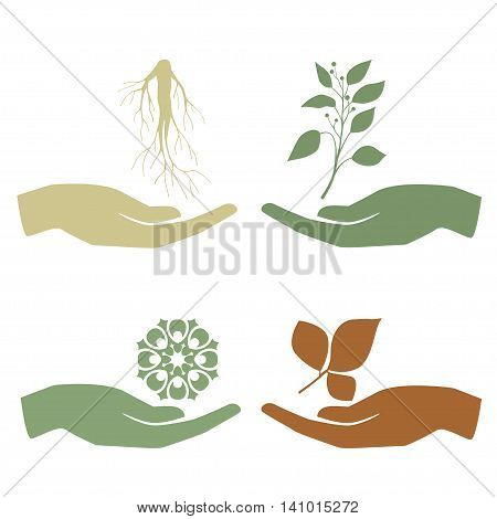 Hand holding plant icon set. Growth concept vector illustration.