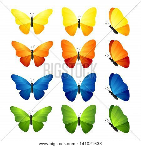 Butterfly set. Vector illustration of tropical blue yellow orange and green butterflies.