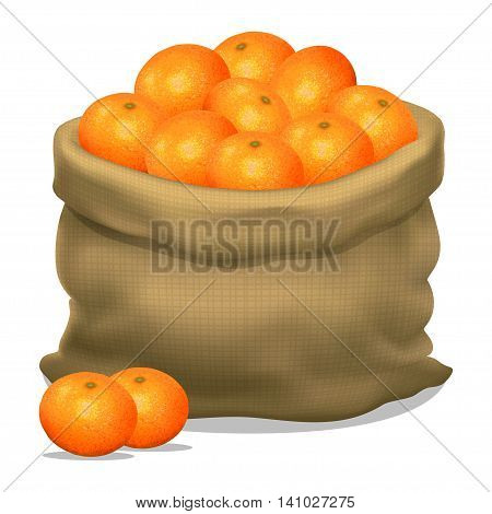 Illustration of a sack of mandarins on a white background. Vector icon