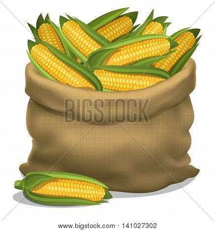 Illustration of a sack of corn on a white background. Vector icon