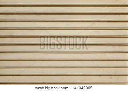 White Color Wood Blinds Or  Louvers Texture And Background