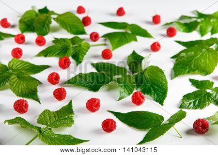 Red fresh raspberries on white background. Scattered natural ripe organic berries with green leaves, selective focus