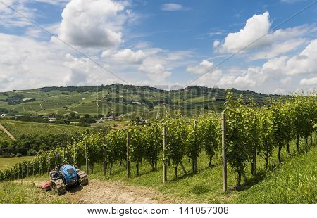 Garbelletto Italy - June 3 2016: Vineyards wit tracked vehicle (tractor) and hills of Garbelletto Piedmont Italy