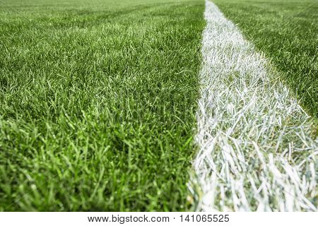 Close up white stripe on the green grass, Football Stadium