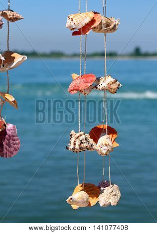 Rare Shells Hanging From A Wire To Decorate The House