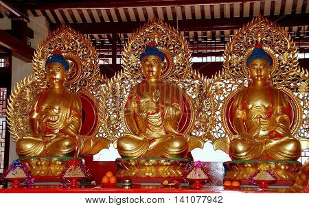 Penang Malaysia - January 10 2008: Three gilded seated Buddhas inside a prayer pavilion at the Taoist Tien Gong Tan Chinese Temple