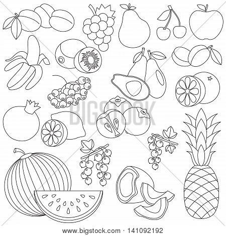 Big fruit set in vector, the colorless version.