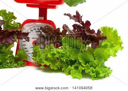 fresh salad and kitchen scales on a white background. horizontal photo.
