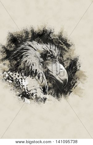 Portrait of a Black Kite with staring eye. Vintage painting, background illustration, beautiful picture, travel texture