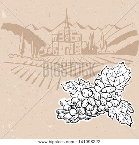 Grapes And Vineyard Farm, Menu Card Background Design