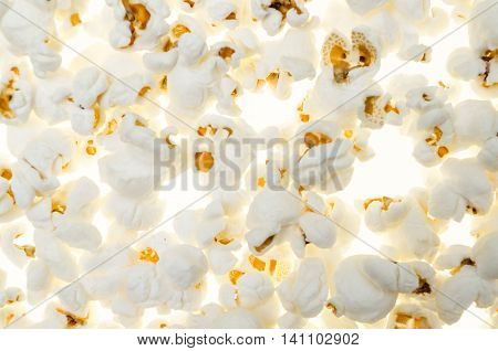 background with pop corn seeds seamless as an unusual composition with patterns and testures on white