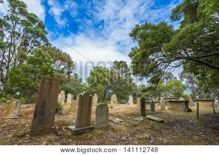 Port Arthur, Tasmania, Australia - January 15, 2015: gravestones in the Isle of the Dead hystoric site, used as the graveyard for the penal settlement of Port Arthur  from 1833 to 1877
