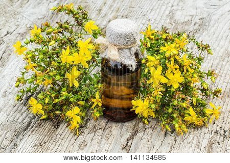 Medicinal plant St. John's wort (Hypericum) and pharmaceutical bottle on old wooden table. Actively used in herbal medicine excellent bee plant