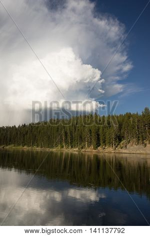 The river flows by in beautiful light in Yellowstone National Park