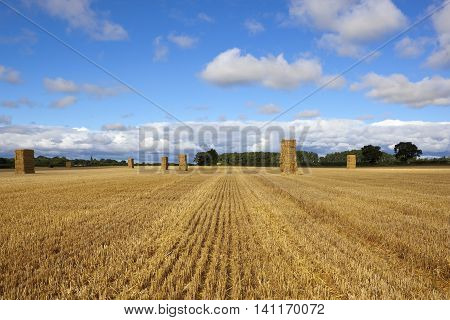 Hay Stacks At Harvest Time