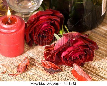 scarlet sweetheart rose