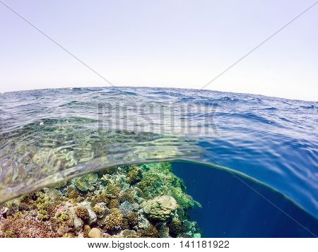 Underwater And Surface Split View In The Tropics Sea