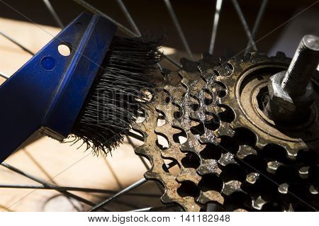 bicycle cleaning cassette from dirt a stiff brush