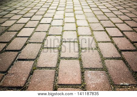 Red Cobblestone Road Background Photo