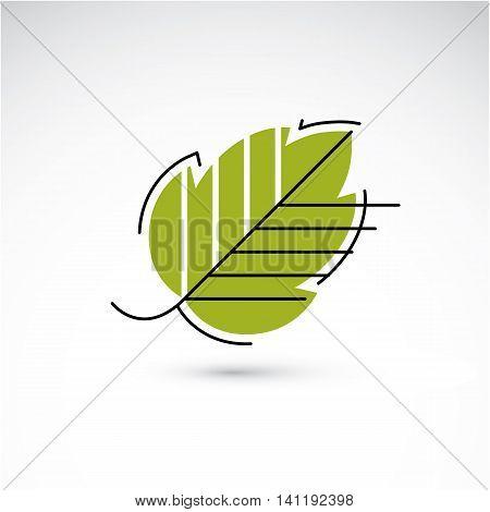 Spring Hazel Tree Leaf, Botany And Eco Flat Image. Vector Illustration Of Herb, Natural And Ecology