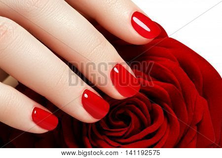 Manicure. Beautiful Manicured Woman's Hands With Red Nail Polish