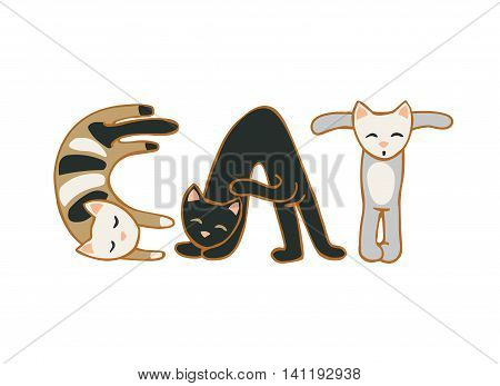 Vector flat inscription on white backgraund: cat
