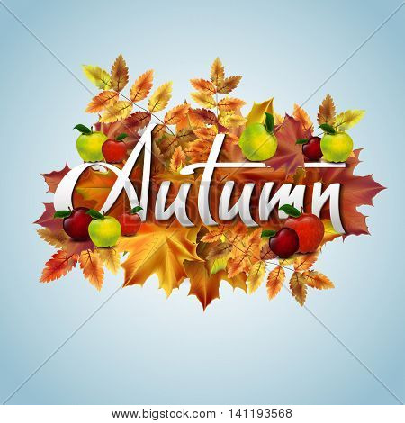 Autumn vector background with autumn leaves and red apples. Hand-written lettering. Typography