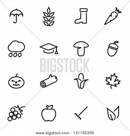 Vector line autumn icon set on white background