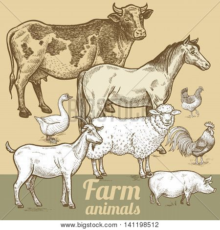Cow horse sheep goat pig goose rooster chicken. Vector illustration of farm animals. The poster for creation of packaging design farm products signage and billboards of natural food stores.