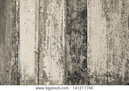 vintage texture of the painted wooden surface with cracks and with a peeling of different pale spotty color and different shades for an abstract background