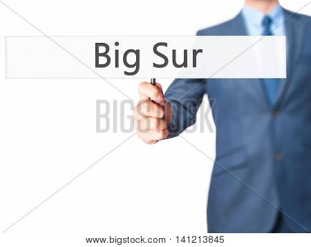 Big Sur - Businessman Hand Holding Sign