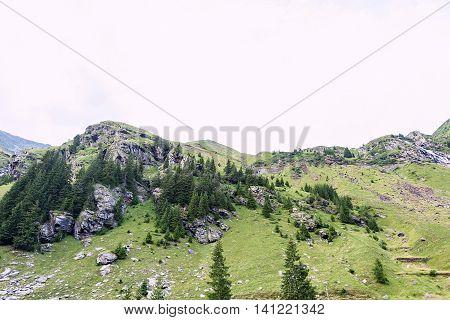Photo of green capra peak a small river and a road in fagaras mountains Romania.