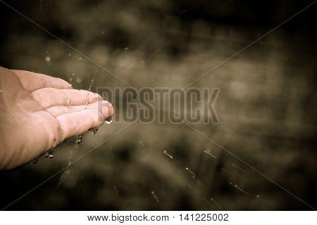 Catching Rain Drops
