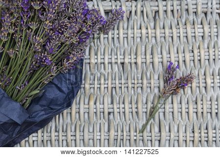 Bouquet of purple fresh fragrant lavender wrapped in blue paper with twig of lavender on wicker wooden background