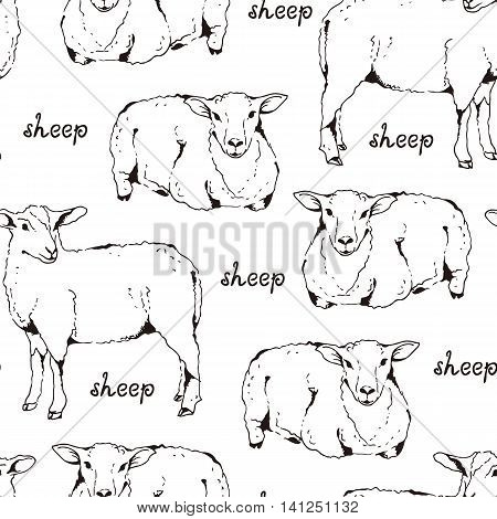 Sheep With Thick Fur Seamless Pattern