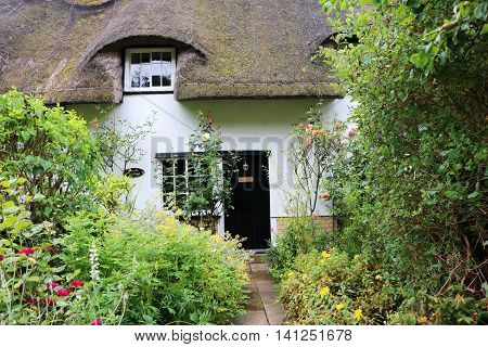English house with thatched roof and foliage